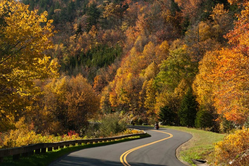 motorcycle on a winding road surrounded by colorful fall trees